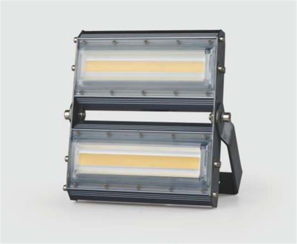 江西亮化照明/江西亮化工程公司/江西樓宇亮化類燈具/LED投光燈